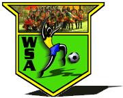 world-soccer-logo